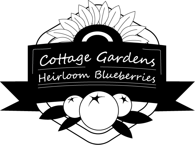 Cottage Gardens Heirloom Blueberries